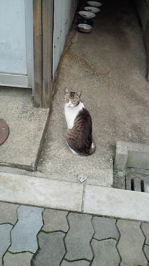 mjuk-by-listaさんのブログ-NEC_0483.jpg