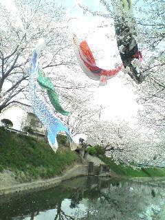 城東区新森古市のヘアサロン 「レコバイスニップ」-D1002075.jpg