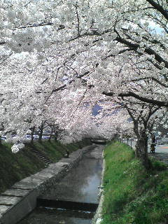 城東区新森古市のヘアサロン 「レコバイスニップ」-D1002034.jpg